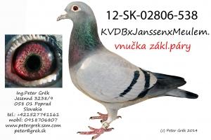 12-SK-02806-538