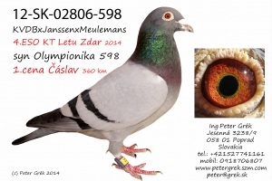 12-SK-02806-598