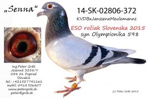 14-SK-02806-372