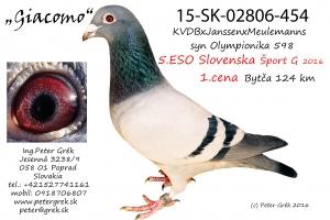 15-SK-02806-454